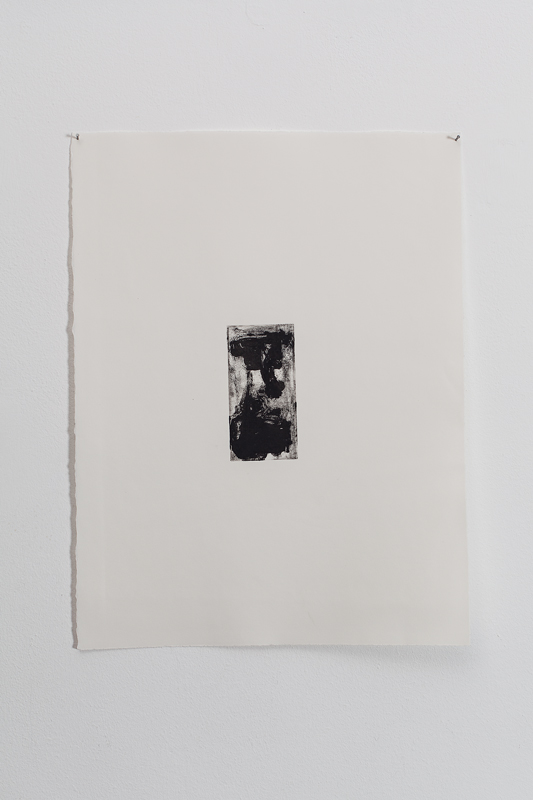 Untitled, monoprint on arches paper, 38.5 x 28 cm unframed, 2012