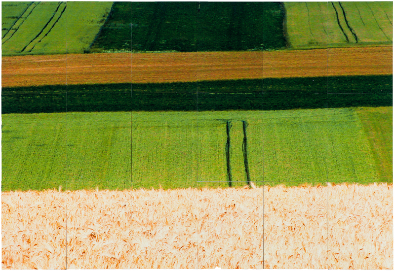 July Landscape - view towards Albert, 2015, photographic print, 33 x 48 inches